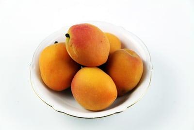 Früchte des Aprikosenbaumes