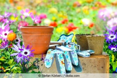 Kapkörbchen mit Gartenwerkzeug