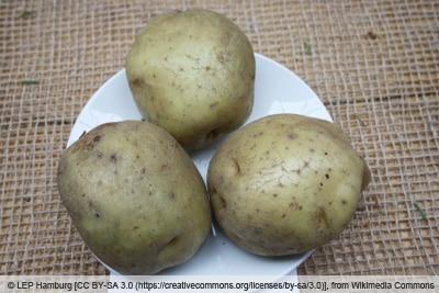 Kartoffelsorte 'Ackersegen' auf Teller