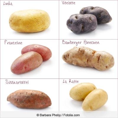 Collage zu Kartoffel-Sorten