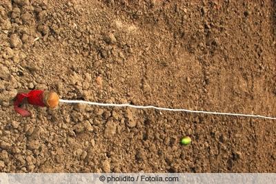 Richtschnur und gelockerter Boden
