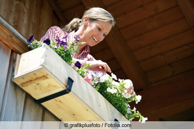 Frau pflegt Petunien in Balkonkasten