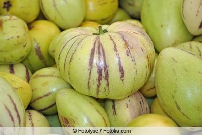 Melonenbirne - Früchte