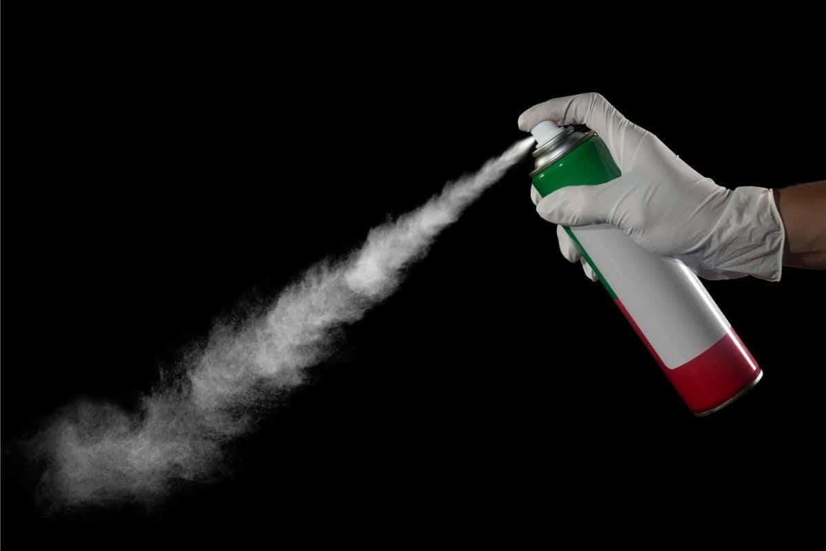 Spray gegen Ungeziefer