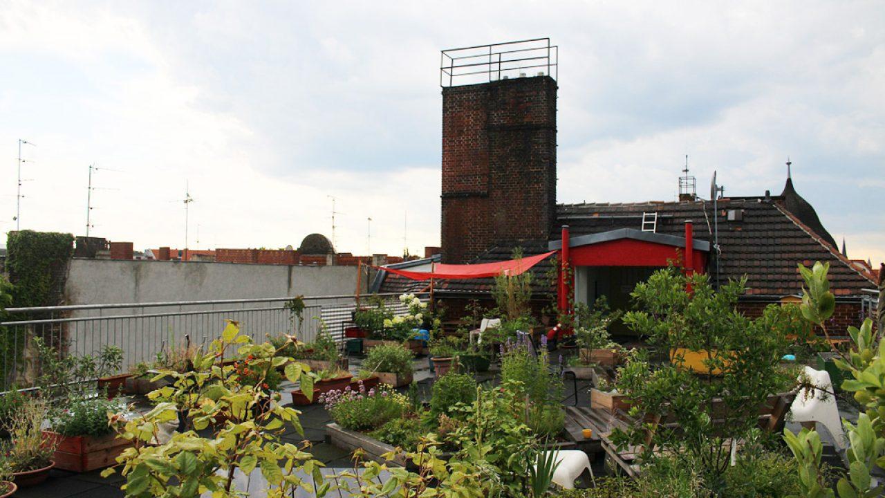 Dachterrasse Ideen Fur Pflanzen Und Gestaltung Gartenlexikon De