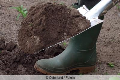 Spaten zum Umgraben