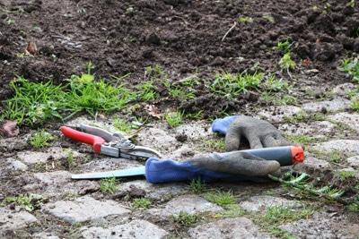 Gartenwerkzeuge zum Jäten und Harken