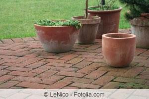 Terrasse mit Moos bewachsen