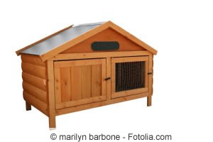 Kaninchengehege aus Holz