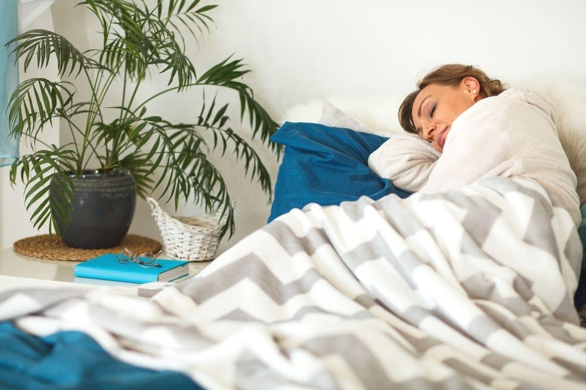 Schlafzimmerpflanze - Palme