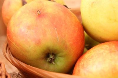 Apfelsorte Elstar