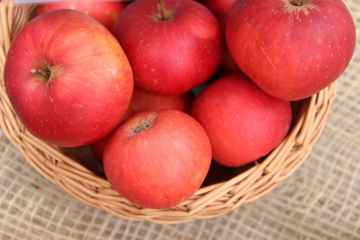 Alte Apfelsorten - Danziger Kantapfel