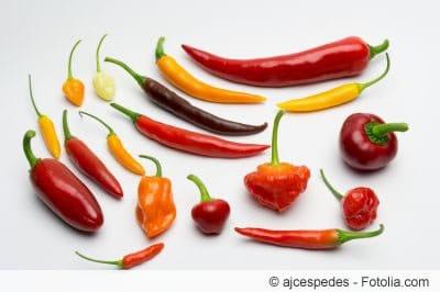 Chilisorten im Überblick