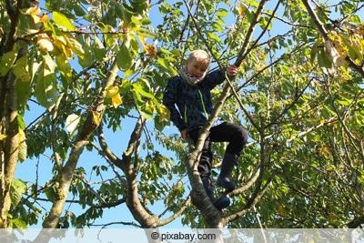 Kind klettert im Baum