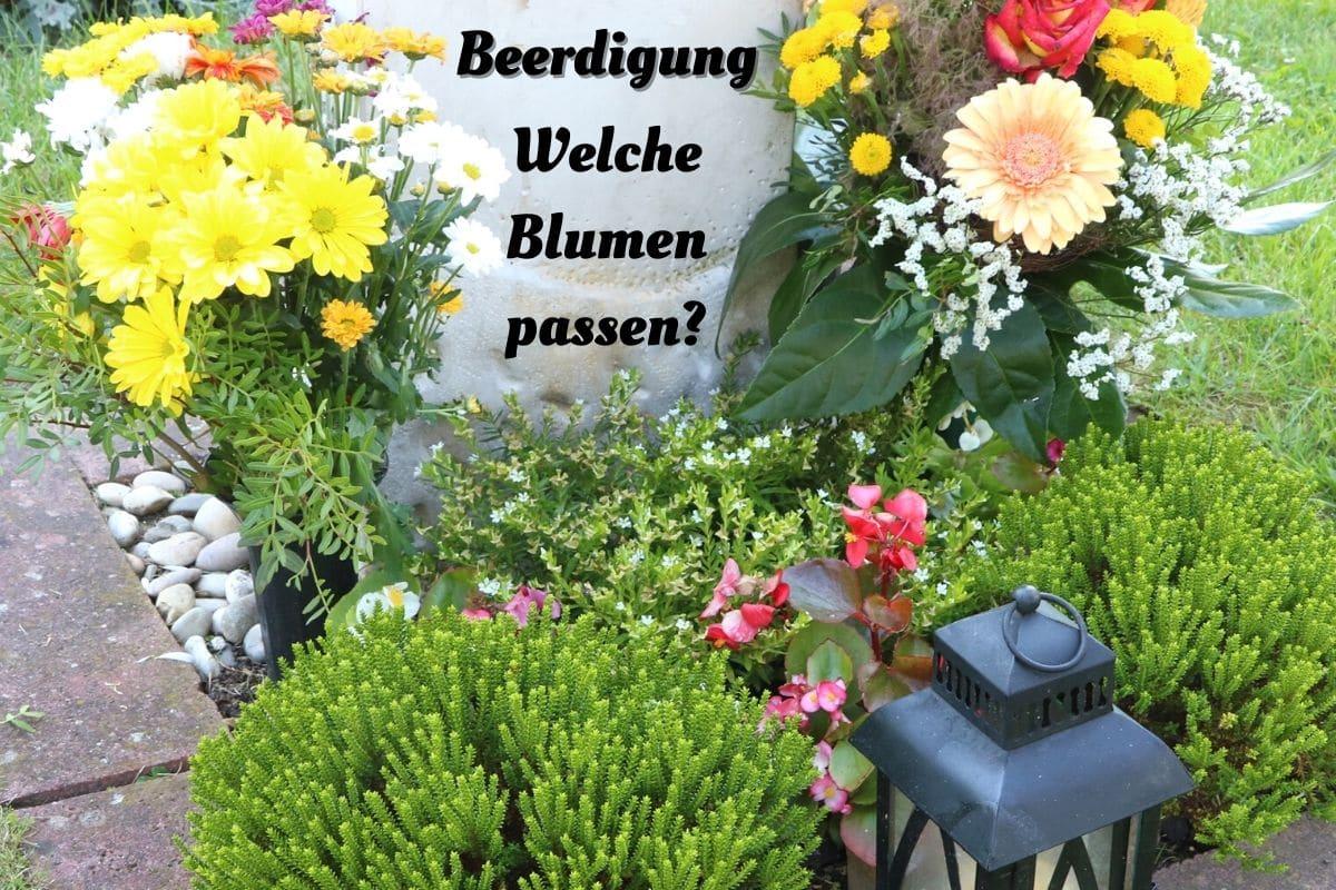 Blumen zur Beerdigung - Grabblumen