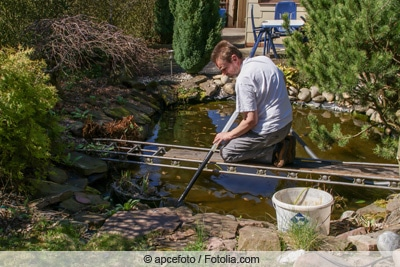 Gartenteich reinigen