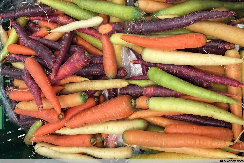 Verschiedene Karottensorten