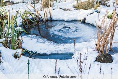 Gefrorener Gartenteich im Winter