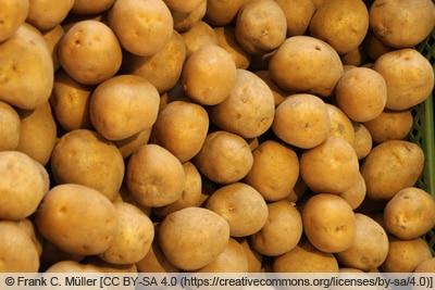 Kartoffelsorte 'Karlena'