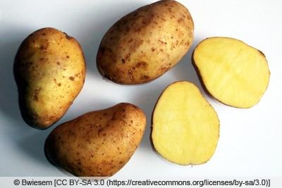 Kartoffelsorte 'Princess'