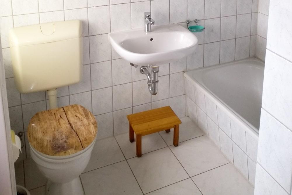 Kleine Würmer im Bad: 4 mögliche Würmer mit Bild ...