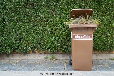 Biotonne mit Rasenschnitt