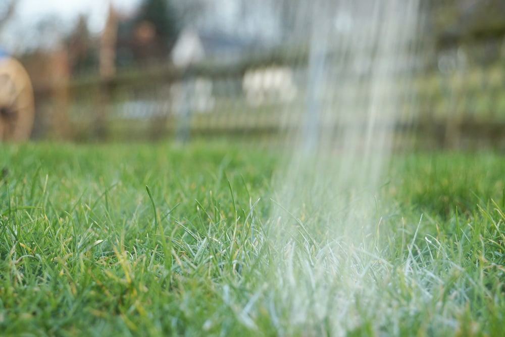 Rasen düngen