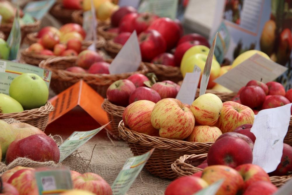Apfelsorten auf Tafel