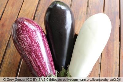 Auberginen-Varianten
