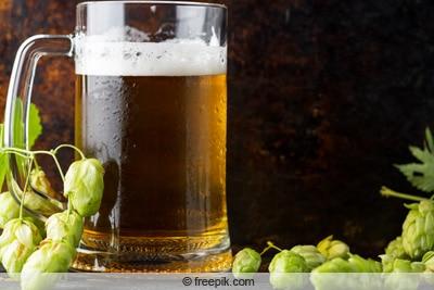 Bier in Glas mit Hopfendolden