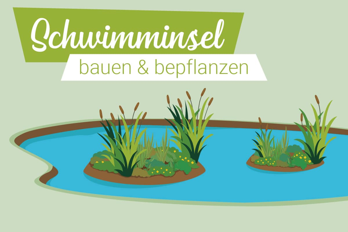 Schwimminsel bauen und bepflanzen