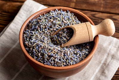Lavendelsamen