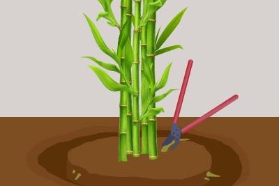 Bambussperre, Grabenmethode