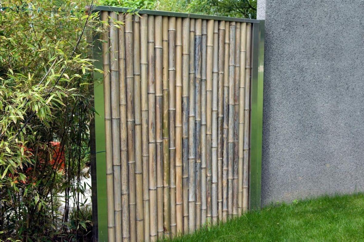 Windschutz Bambus