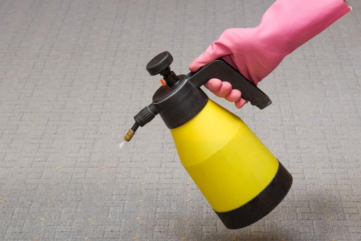 Chemisches Reinigunsmittel auf Pflaster