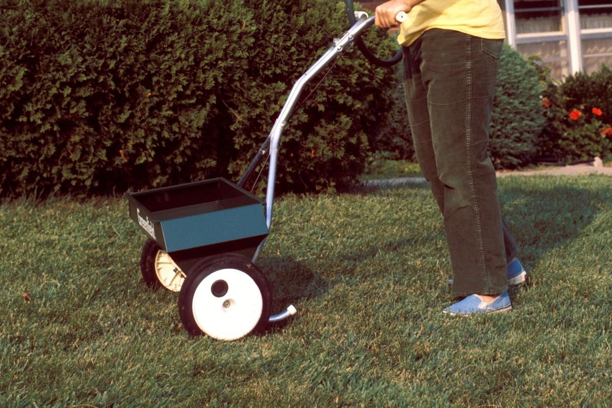 Streuwagen zum Rasen düngen mit Blaukorn