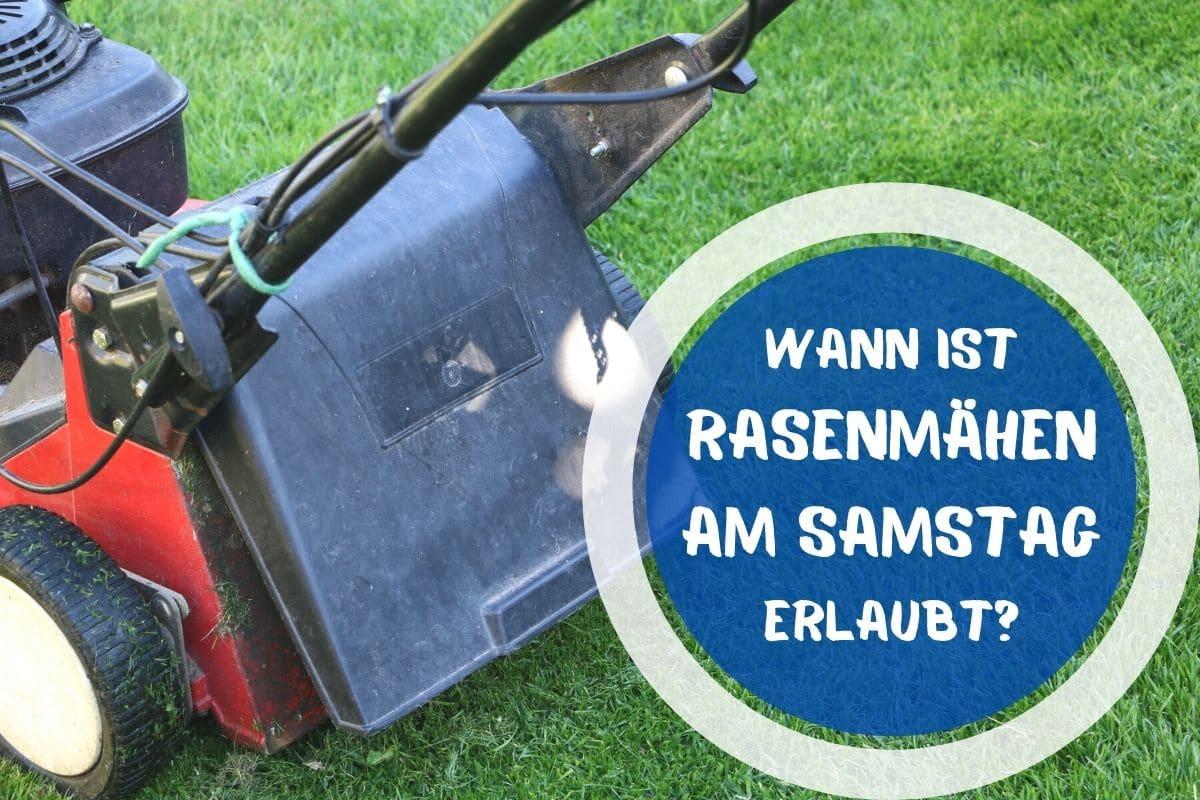 Rasenmähen am Samstag