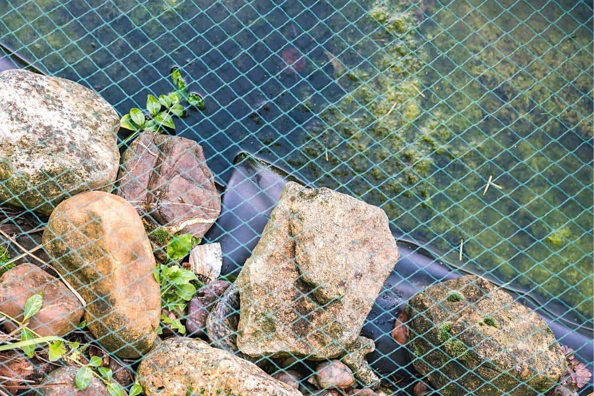 Teichsicherung mit Netz