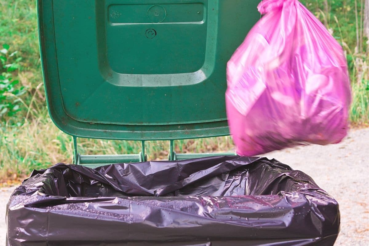 Tausendfüßler vorbeugen - Müll entsorgen