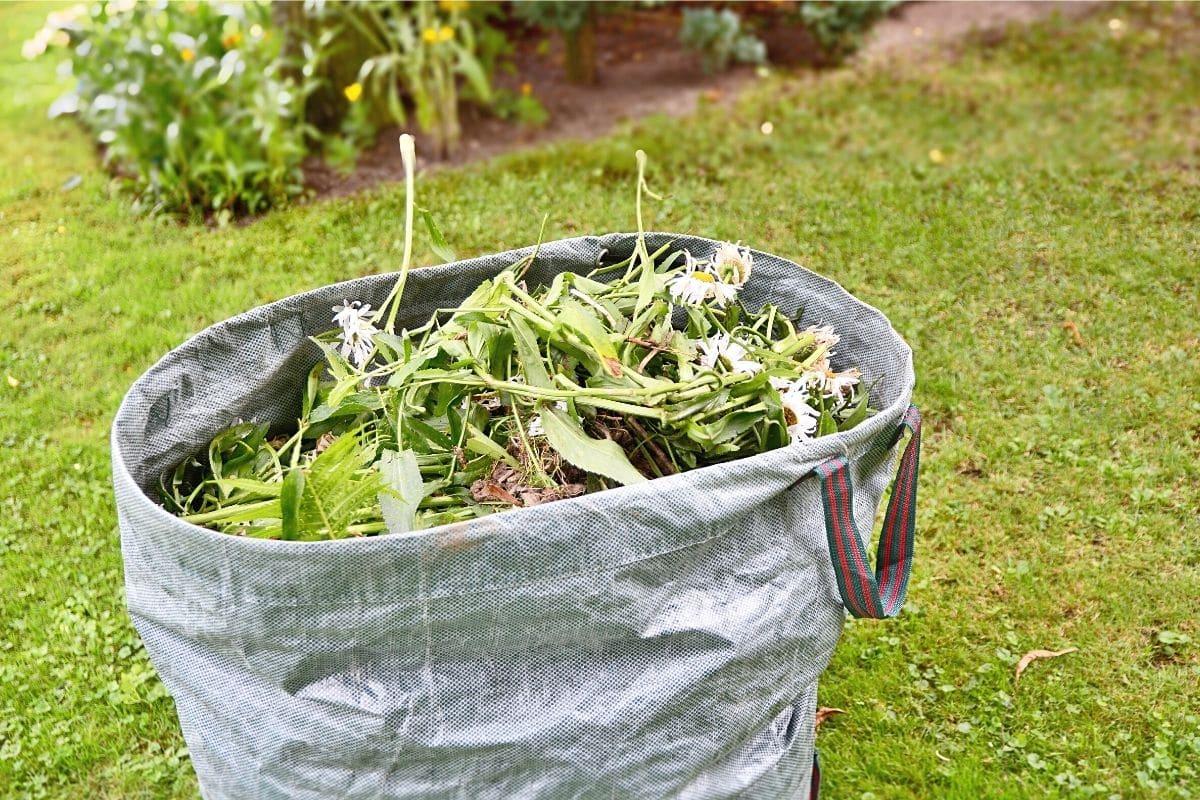 Sack mit Unkraut im Garten