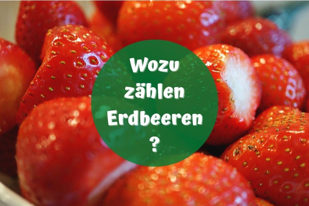 Was sind Erdbeeren