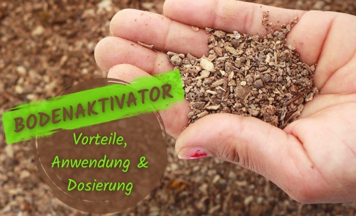 Bodenaktivator - Rasenaktivator