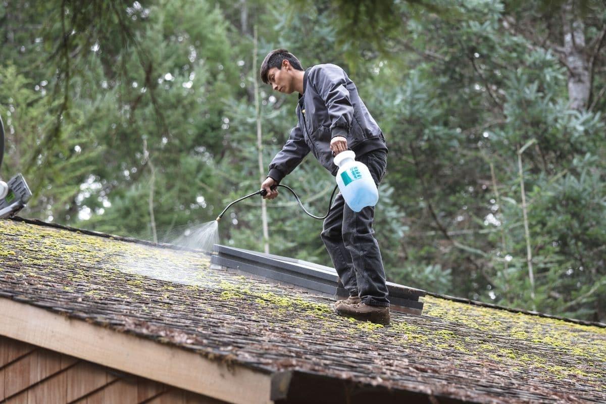 Mann entfernt Moos vom Dach