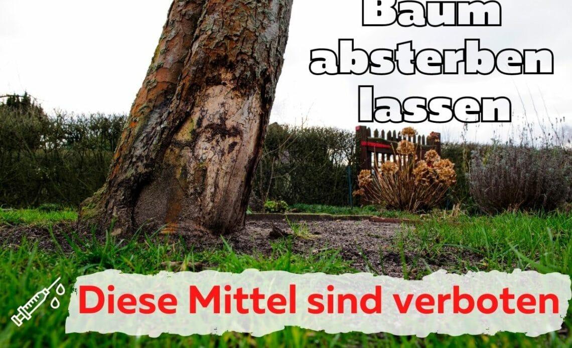 Baumvernichtungsmittel erlaubt oder verboten