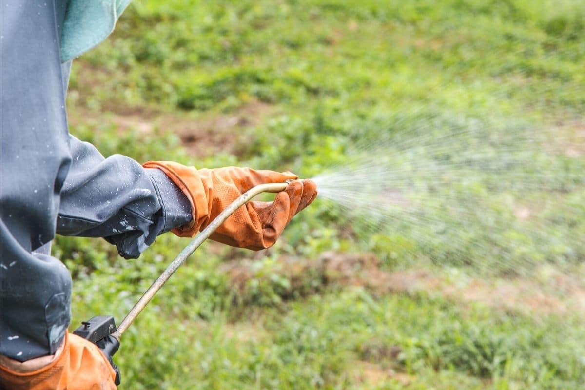 Baumvernichtungsmittel - Herbizide