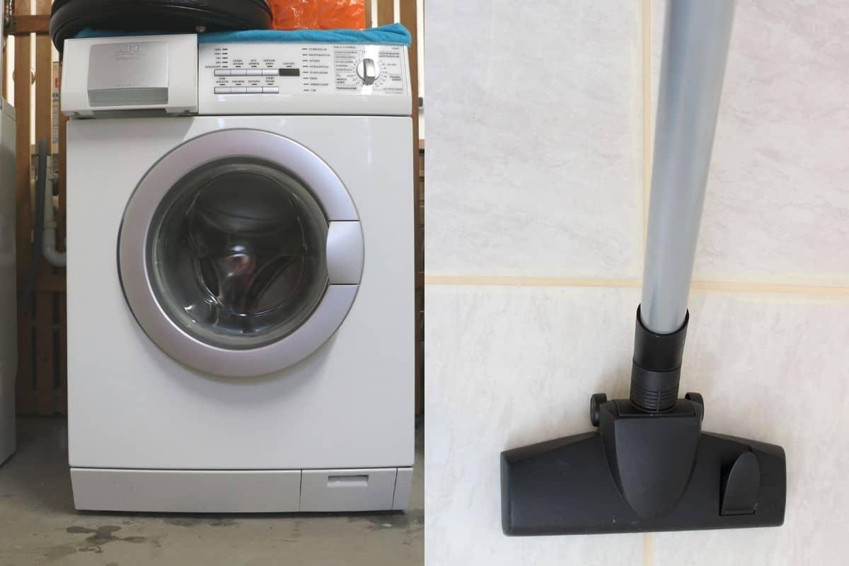 Flöhe in der Wohnung - Waschmaschine und Staubsauger