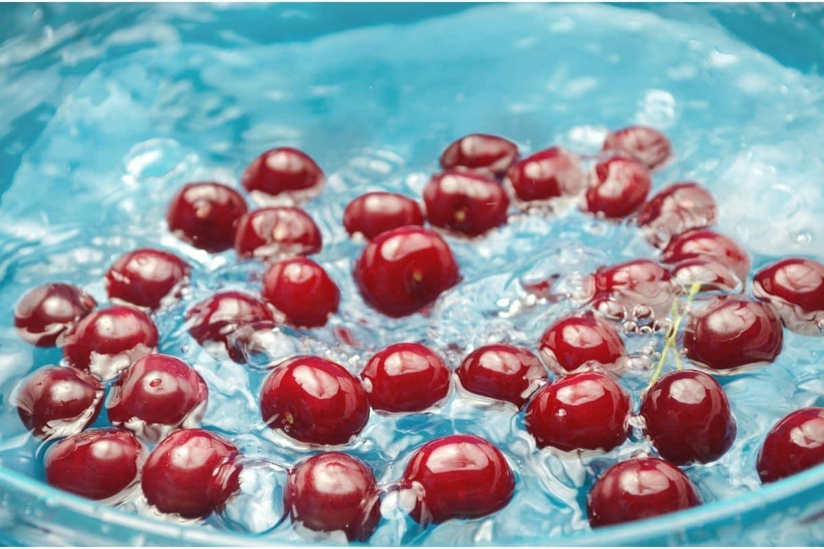Kirschen im Wasserbad entwurmen